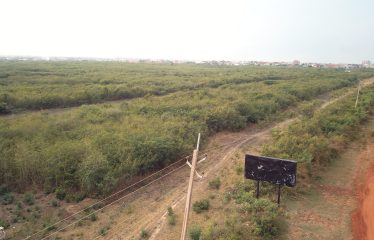 20 ACRES OF LAND
