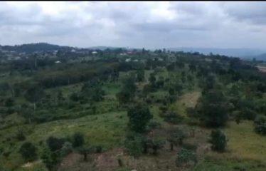 10 ACRES OF LAND @ ABURI – AHWEAREASE